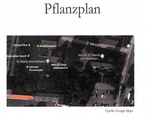 Pflanzplan - Detail